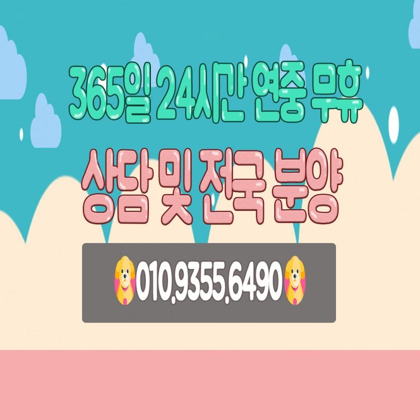 48886a4864261d78b8b2ccb004615b25_1600572574_5953.jpg